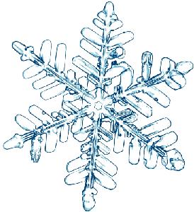 Etoiles de neige02