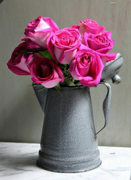 Pot aux roses